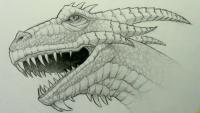 реалистичную голову дракона карандашом