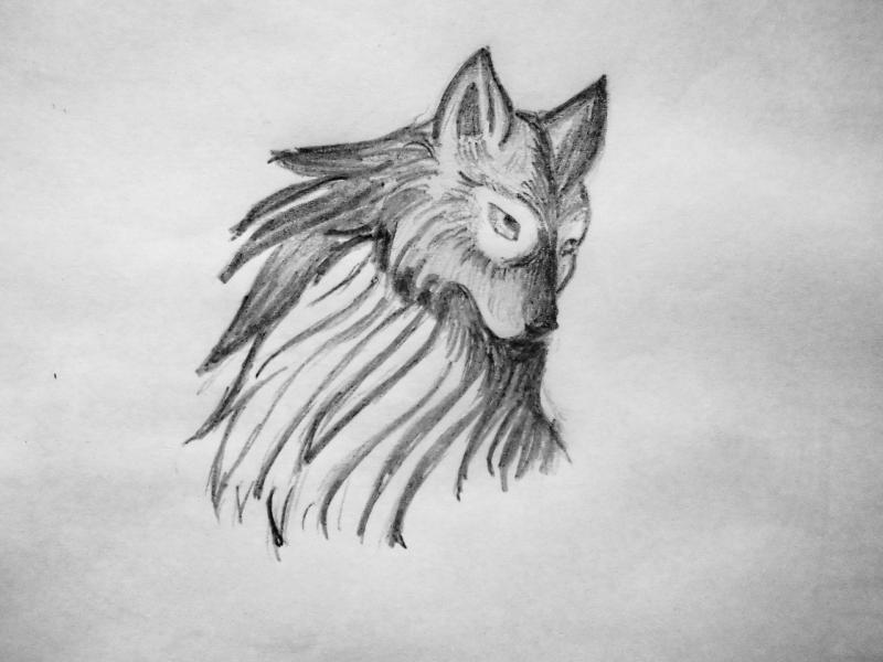 Рисуем Симурана, крылатого волка