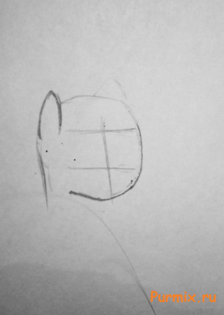 Рисуем красивую пони Флаттершай карандашами - шаг 1