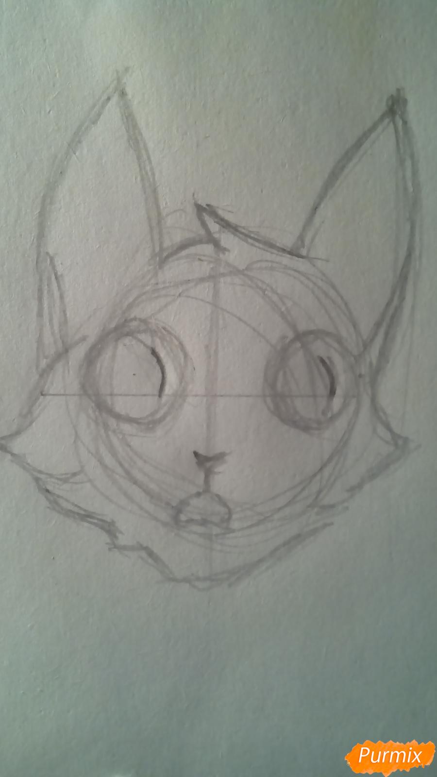 Рисуем кота Мистера Полночь из игры Фрэн Боу карандашами - шаг 2