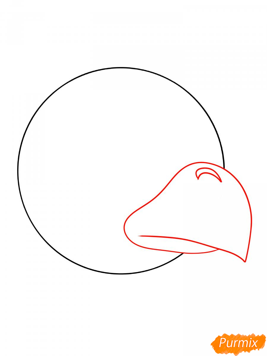 Рисуем Ворона феникса - шаг 3