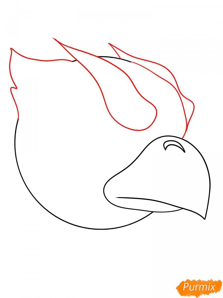 Рисуем Ворона феникса - шаг 5