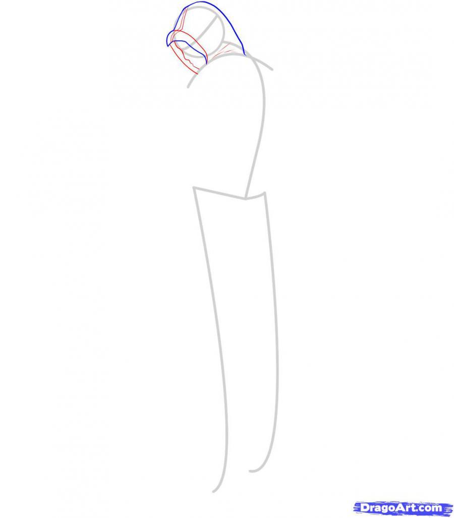 Рисуем Альтаира из игры Assassins Creed - шаг 3