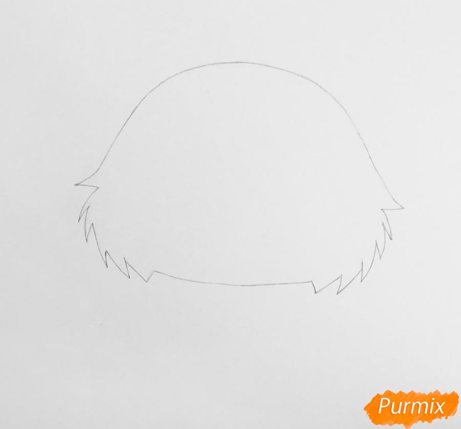 Рисуем чёрно серую кошку из мультфильма My Littlest Pet Shop - шаг 1
