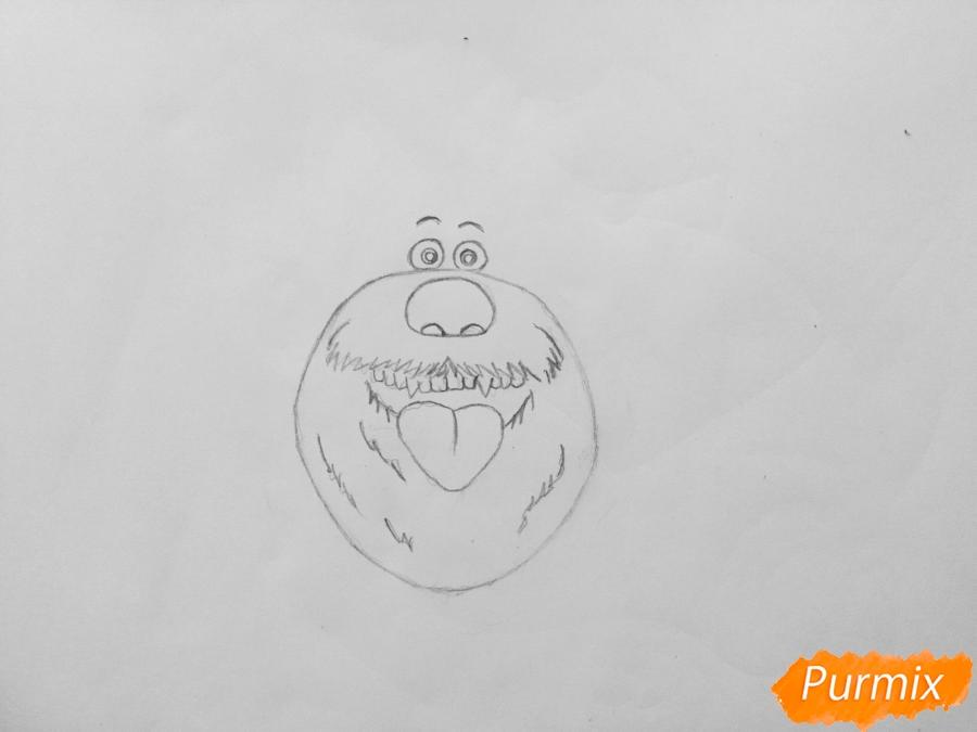 Рисуем собаку Дюка из мультфильма Тайная жизнь домашних животных - шаг 2