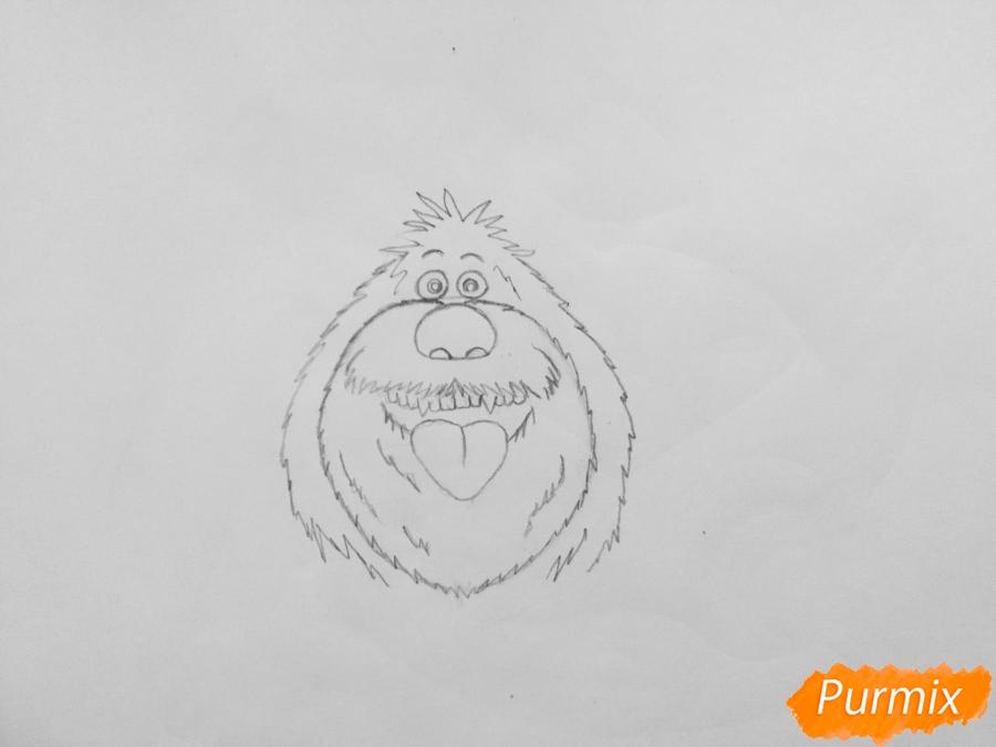 Рисуем собаку Дюка из мультфильма Тайная жизнь домашних животных - шаг 3