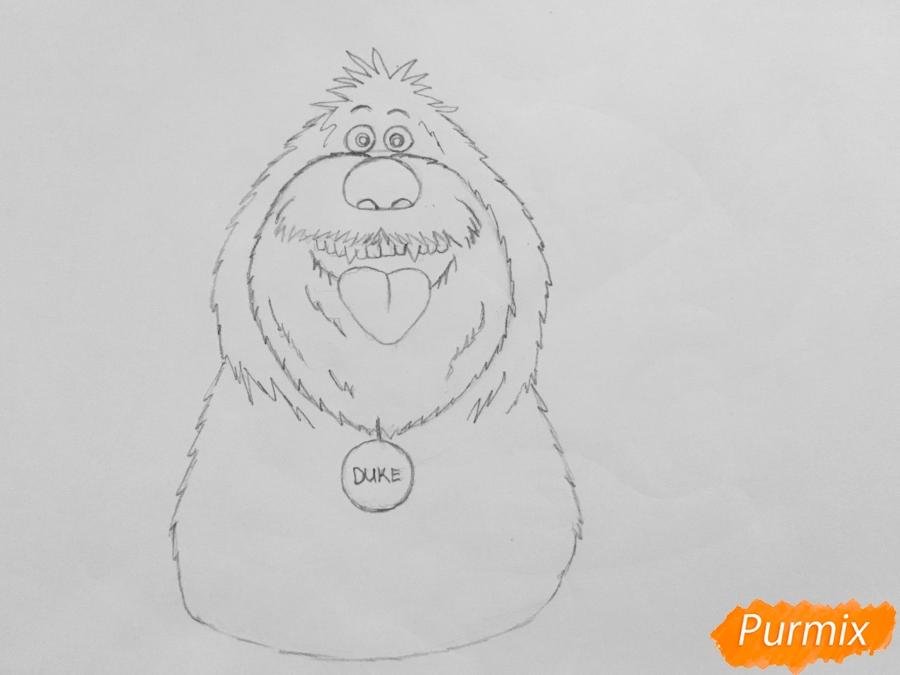 Рисуем собаку Дюка из мультфильма Тайная жизнь домашних животных - шаг 4