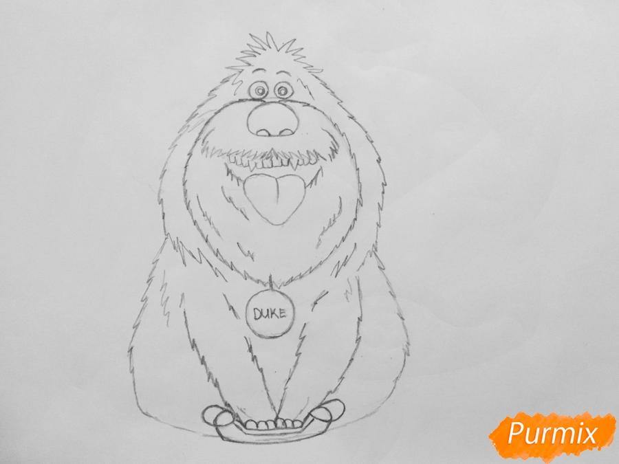 Рисуем собаку Дюка из мультфильма Тайная жизнь домашних животных - шаг 5