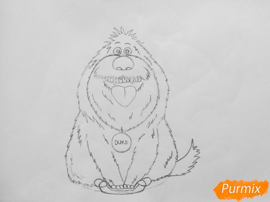 Рисуем собаку Дюка из мультфильма Тайная жизнь домашних животных - шаг 6