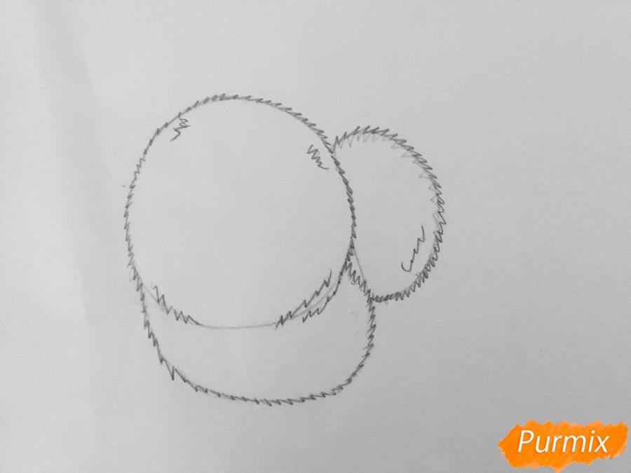 Рисуем Гиджет из мультфильма Тайная жизнь домашних животных - шаг 4