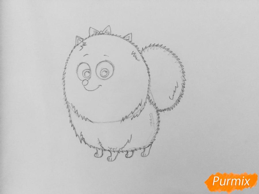 Рисуем Гиджет из мультфильма Тайная жизнь домашних животных - шаг 5
