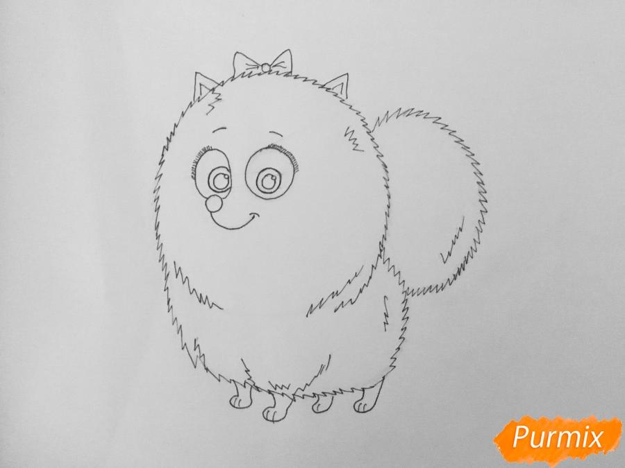 Рисуем Гиджет из мультфильма Тайная жизнь домашних животных - шаг 6