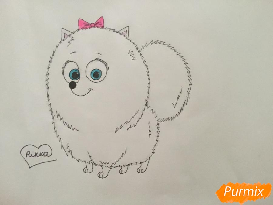 Рисуем Гиджет из мультфильма Тайная жизнь домашних животных - шаг 7