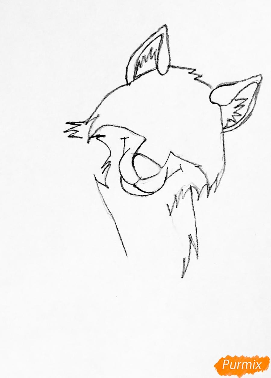 Рисуем хаски Балто из мультфильма Балто - шаг 1