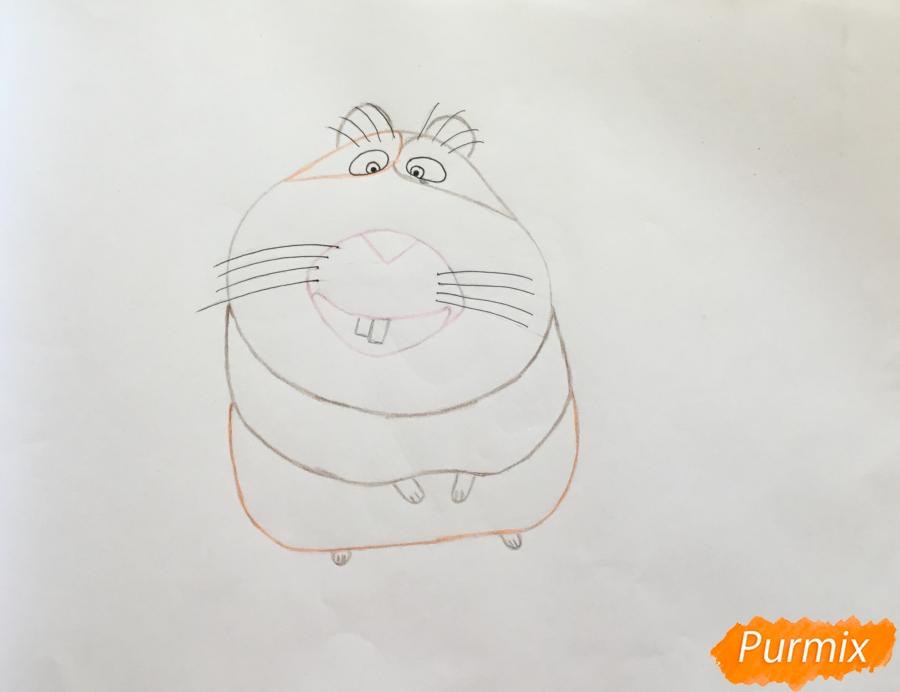 Рисуем морскую свинку Нормана из мультфильма Тайная жизнь домашних животных - шаг 5