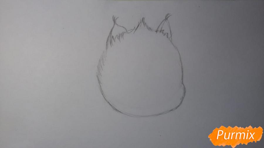 Рисуем Пикси из комикса Пикси и Брут - шаг 2