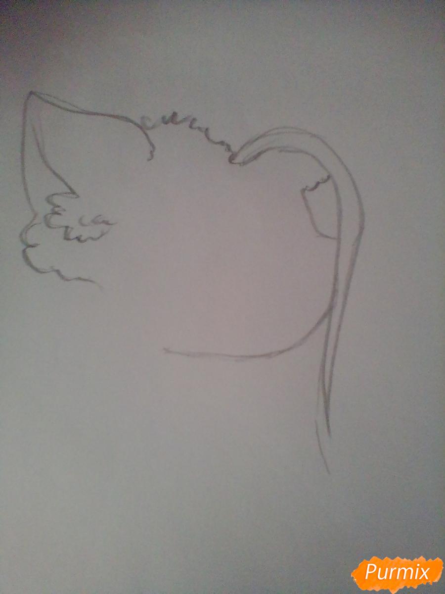 Рисуем Пинкамину Диану Пай в виде человека - шаг 1