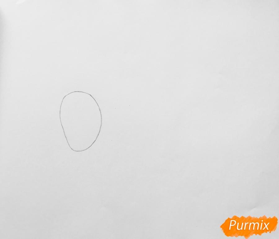 Рисуем бассет хаунда Попса из мультфильма Тайная жизнь домашних животных  . - шаг 1