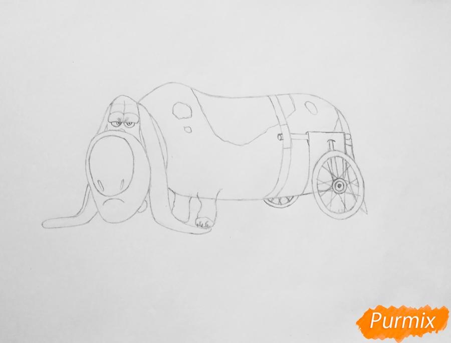 Рисуем бассет хаунда Попса из мультфильма Тайная жизнь домашних животных  . - шаг 6