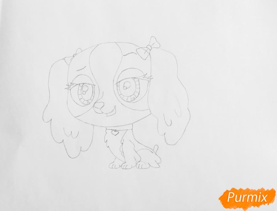 Рисуем собаку Нутмег Даш из мультфильма My Littlest Pet Shop - шаг 4