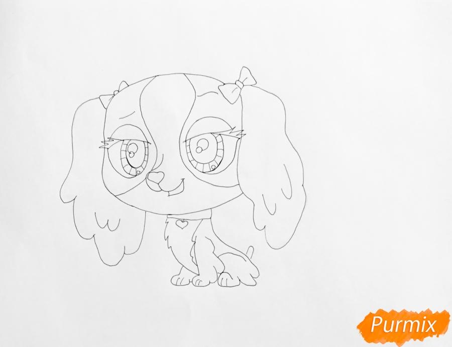 Рисуем собаку Нутмег Даш из мультфильма My Littlest Pet Shop - шаг 5