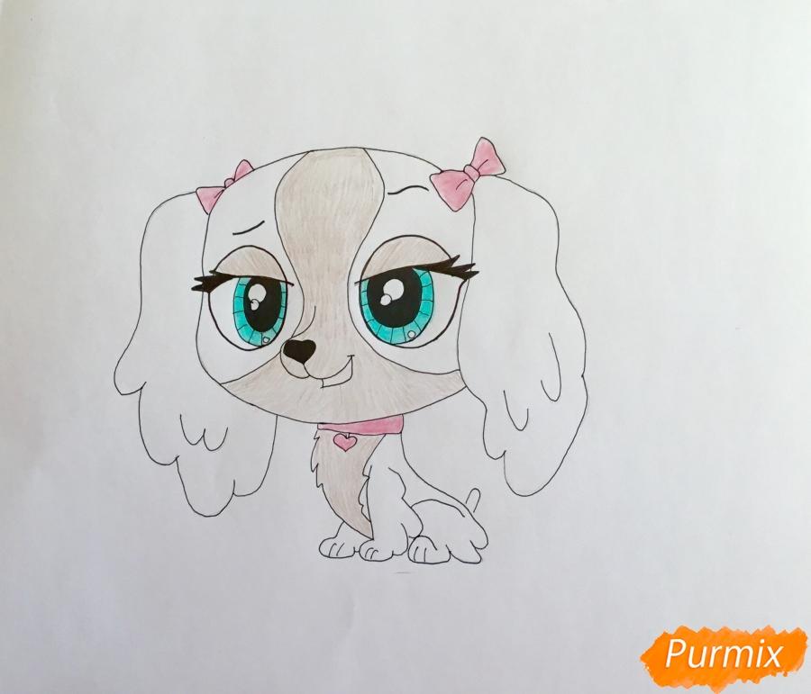 Рисуем собаку Нутмег Даш из мультфильма My Littlest Pet Shop - шаг 6