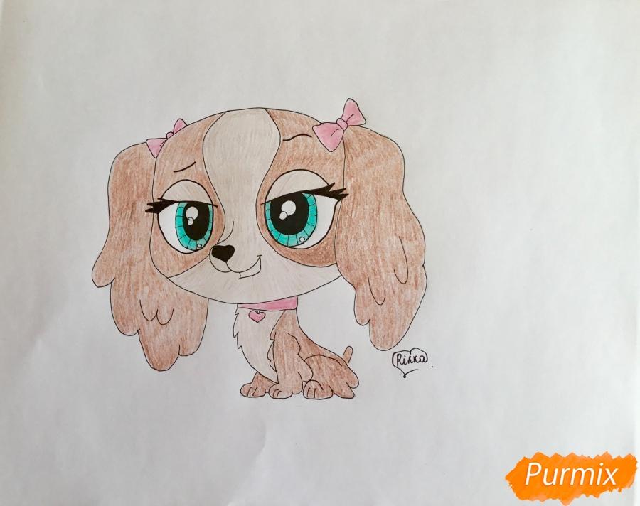 Рисуем собаку Нутмег Даш из мультфильма My Littlest Pet Shop - шаг 7