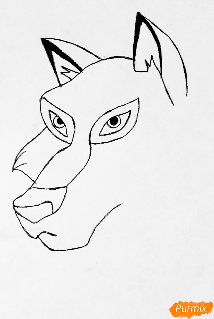 Рисуем волчицу Энаю из мультфильма Балто карандашами - шаг 2