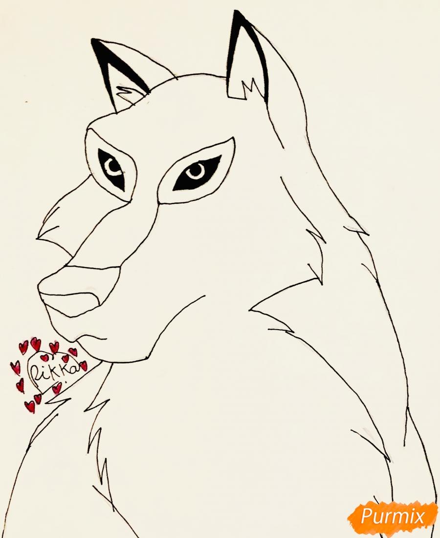 Рисуем волчицу Энаю из мультфильма Балто карандашами - шаг 5