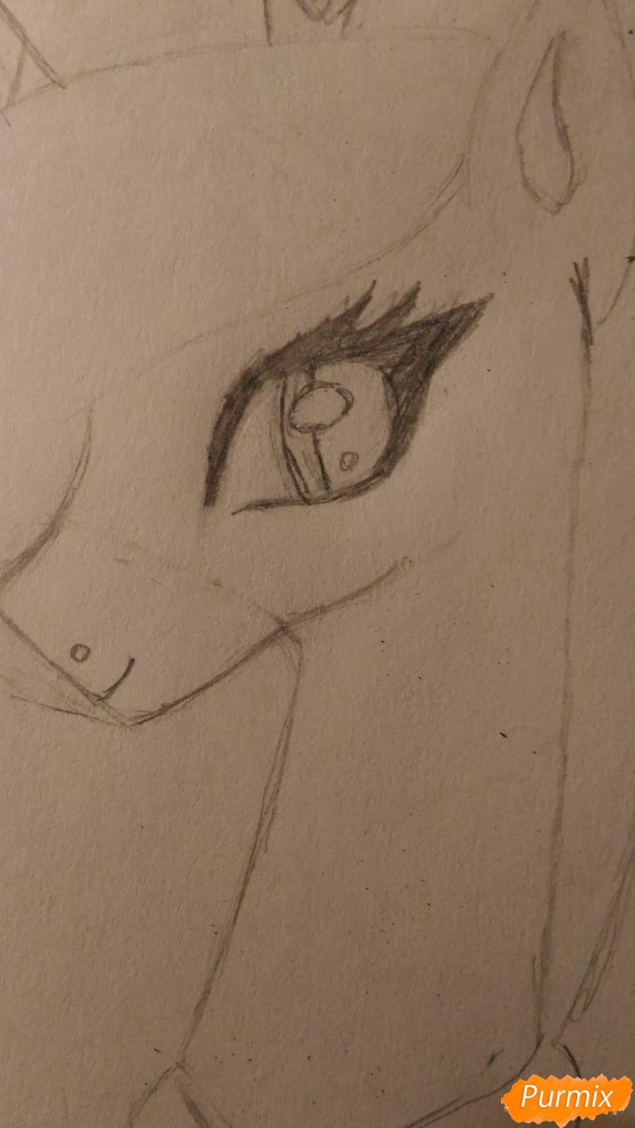 Рисуем пони принцессу Каденс из мультика My Little Pony - шаг 7