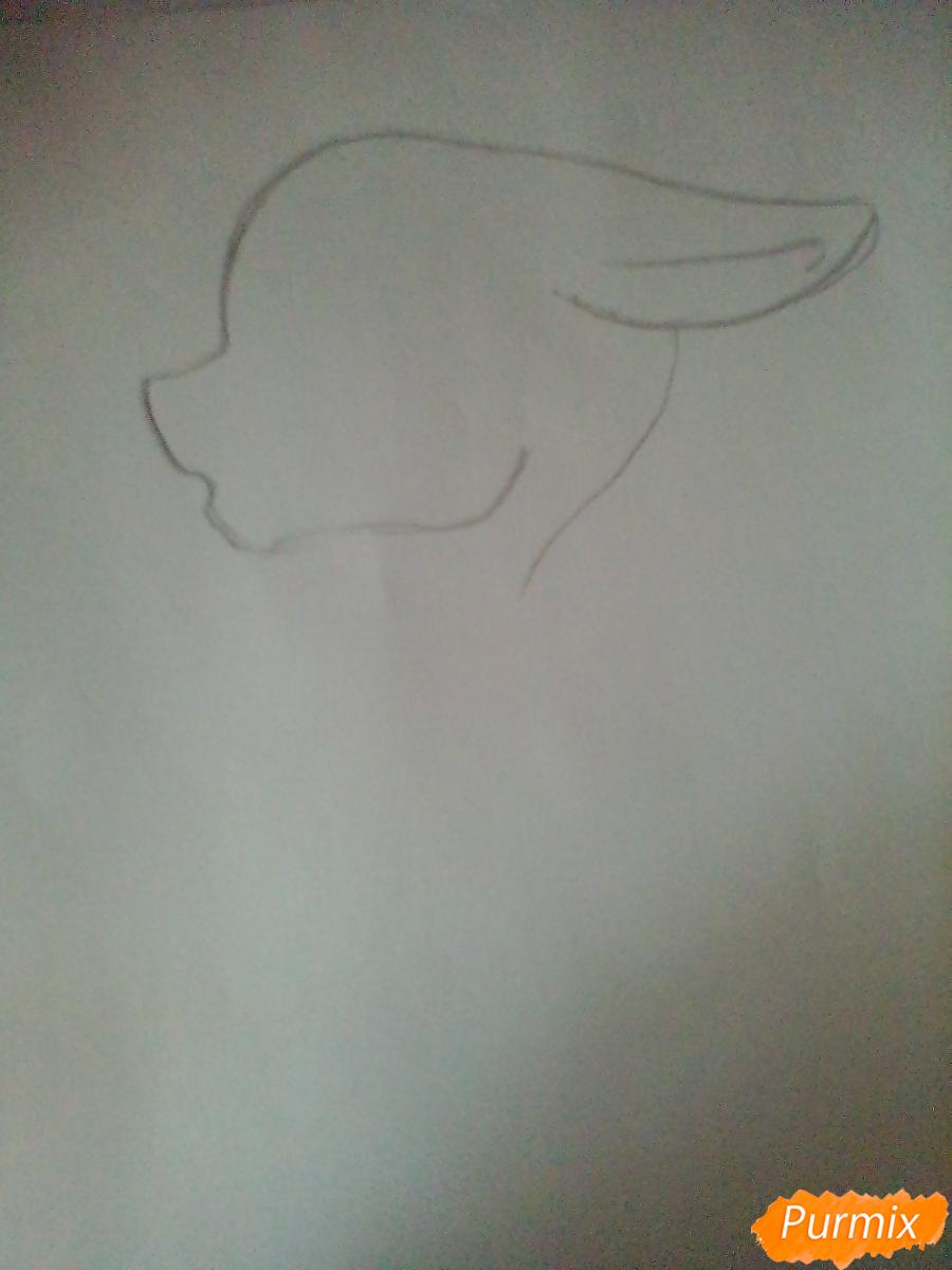 Рисуем красивый портрет Флаттершай - шаг 1