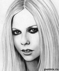 Фото портрет Аврил Лавин простым карандашом