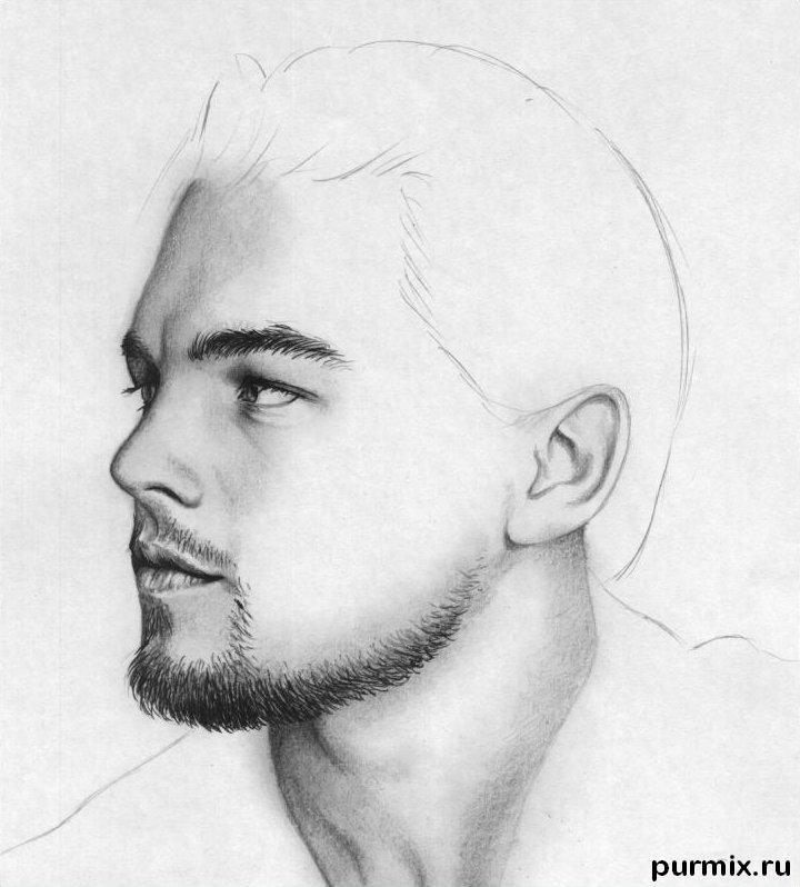 Рисуем портрет Леонардо ДиКаприо - шаг 6