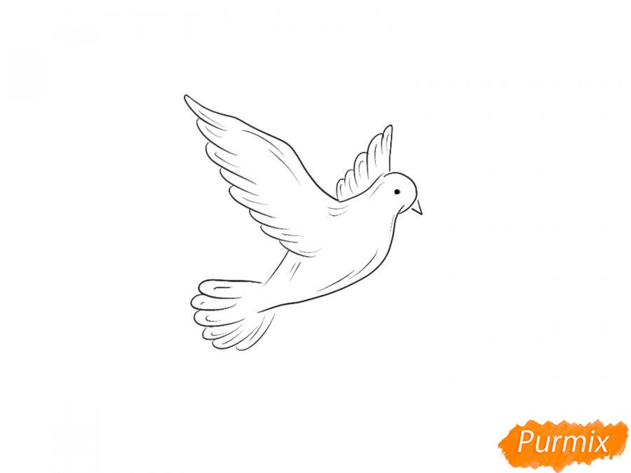 Рисуем голубя на День Победы 9 мая карандашами или гуашью - шаг 5