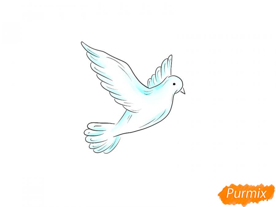 Рисуем голубя на День Победы 9 мая карандашами или гуашью - шаг 6