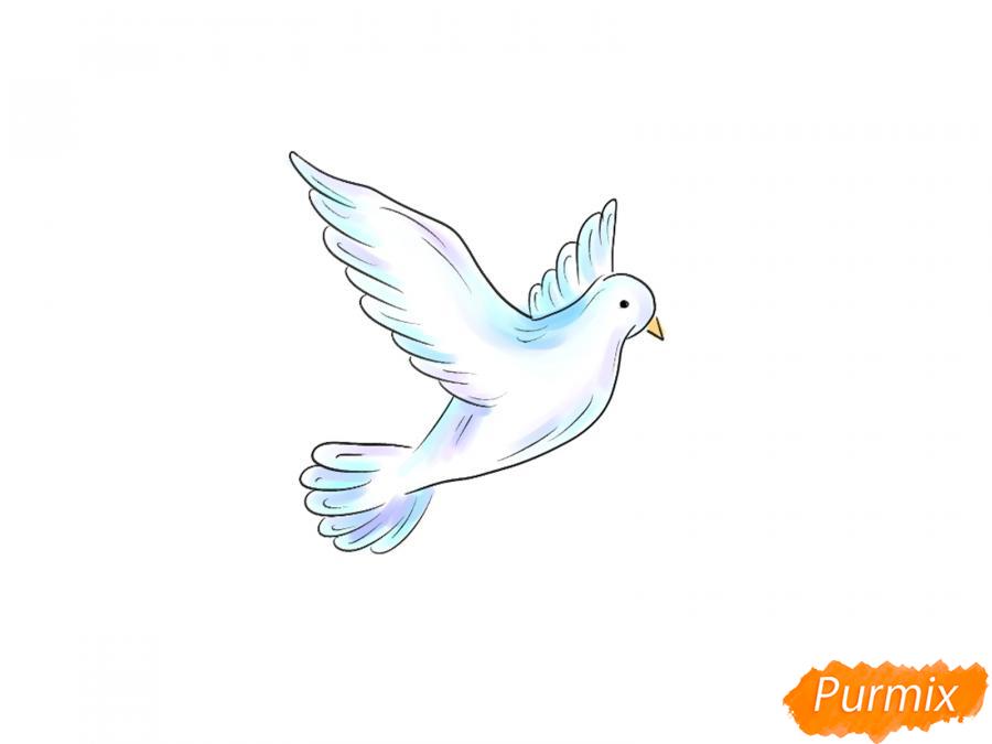 Рисуем голубя на День Победы 9 мая карандашами или гуашью - шаг 7