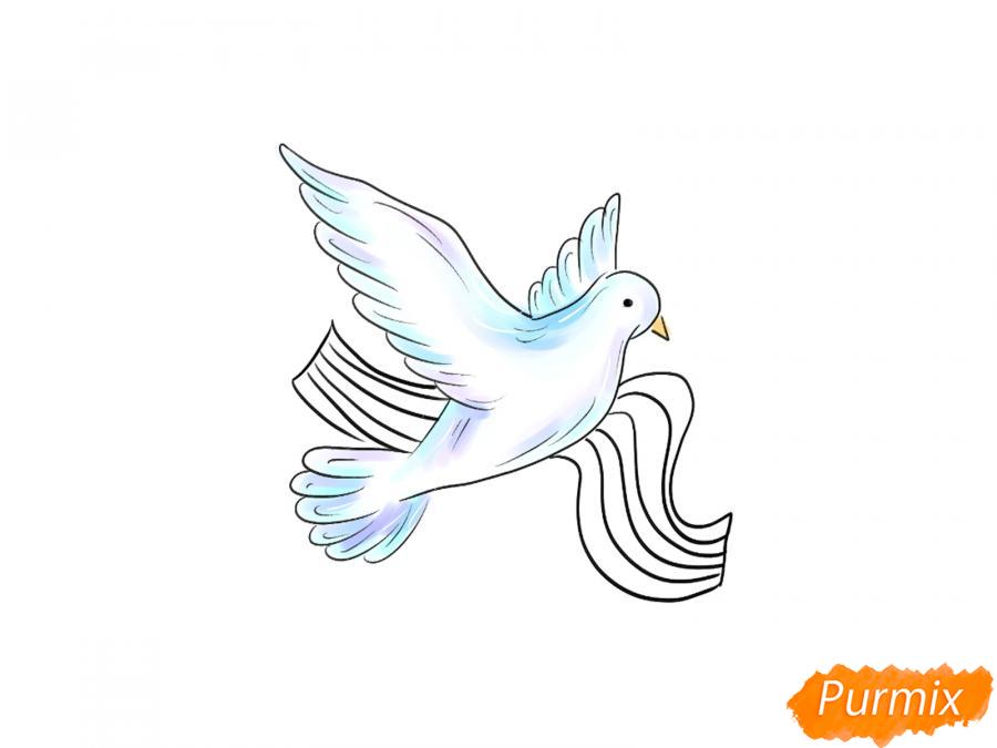Рисуем голубя на День Победы 9 мая карандашами или гуашью - шаг 8