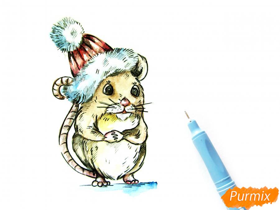 Рисуем крысу символ 2020 года карандашами - шаг 8