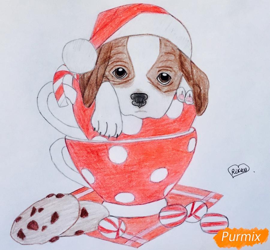Рисуем милого новогоднего щеночка чашечках - шаг 11