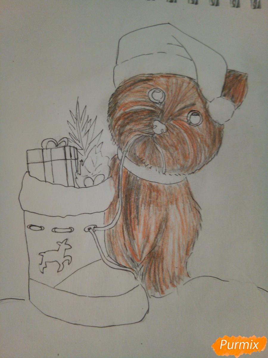 Рисуем новогоднего щеночка породы йоркширский терьер в шапочке - шаг 8