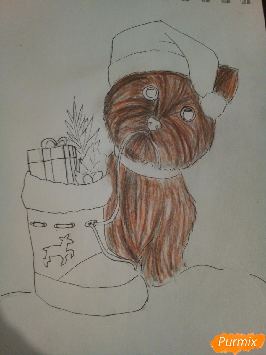 Рисуем новогоднего щеночка породы йоркширский терьер в шапочке - шаг 9