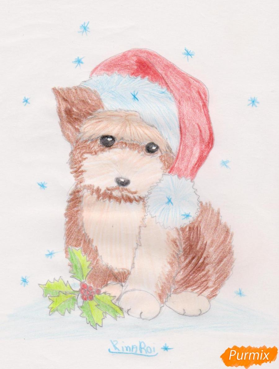 Рисуем новогоднюю собачку цветными карандашами - шаг 10