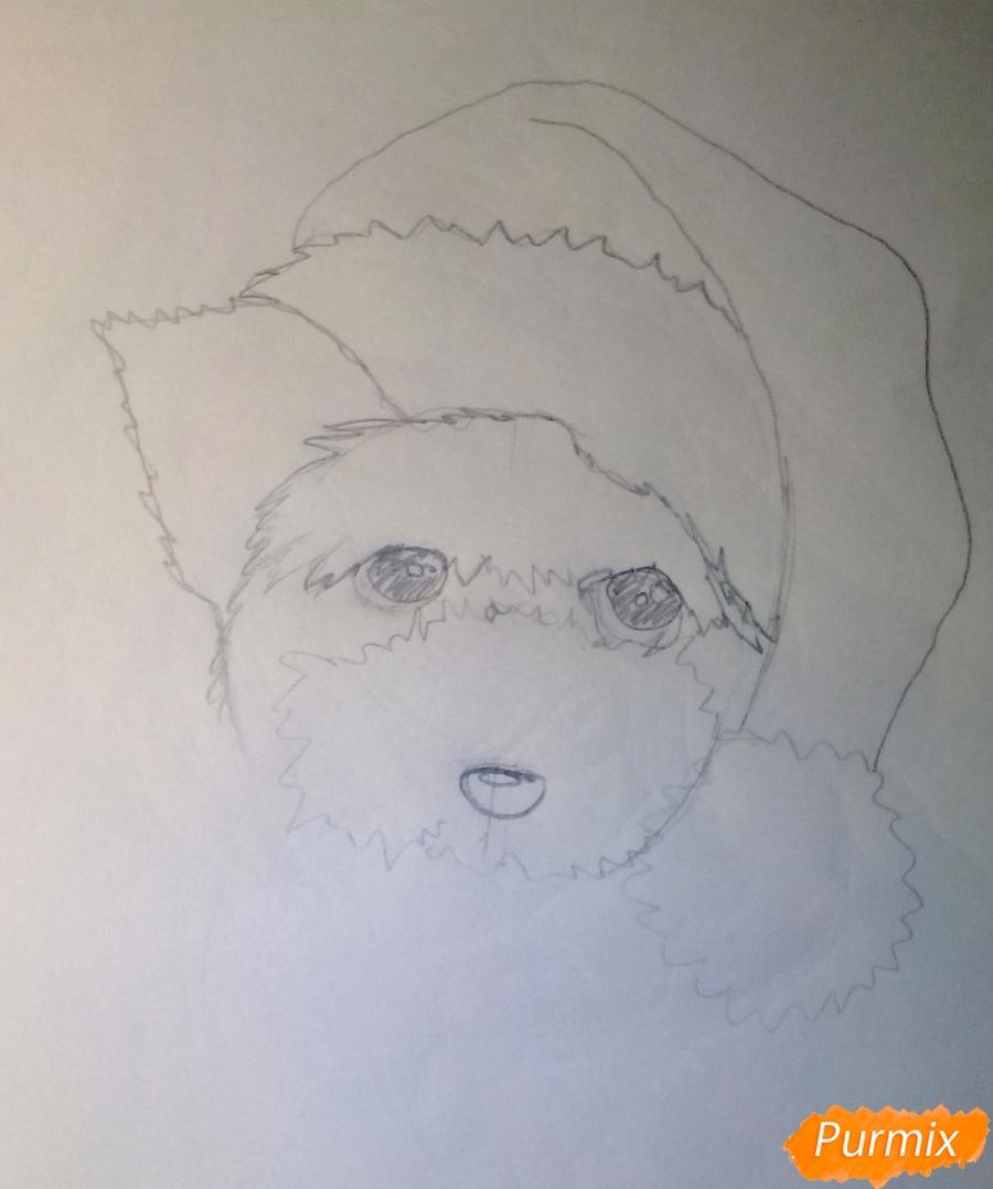 Рисуем новогоднюю собачку цветными карандашами - шаг 3