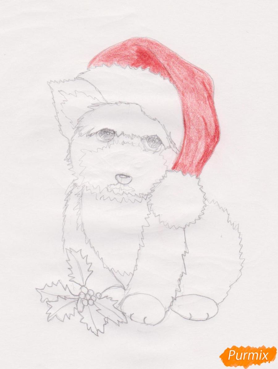 Рисуем новогоднюю собачку цветными карандашами - шаг 6