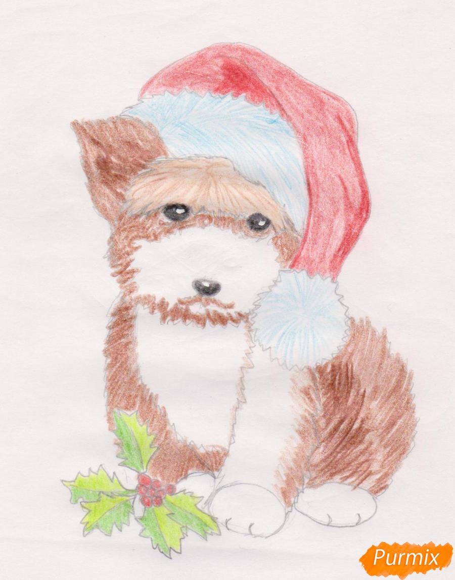 Рисуем новогоднюю собачку цветными карандашами - шаг 8