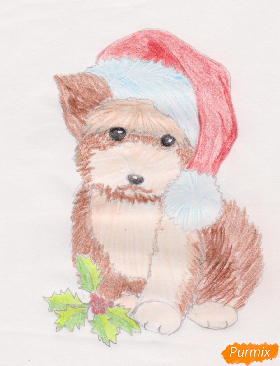 Рисуем новогоднюю собачку цветными карандашами - шаг 9