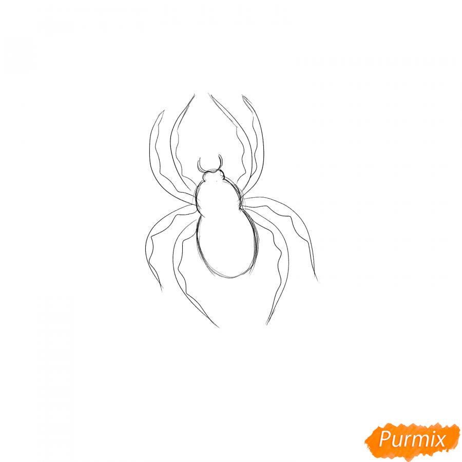 Рисуем паука на Хэллоуин карандашами - шаг 3
