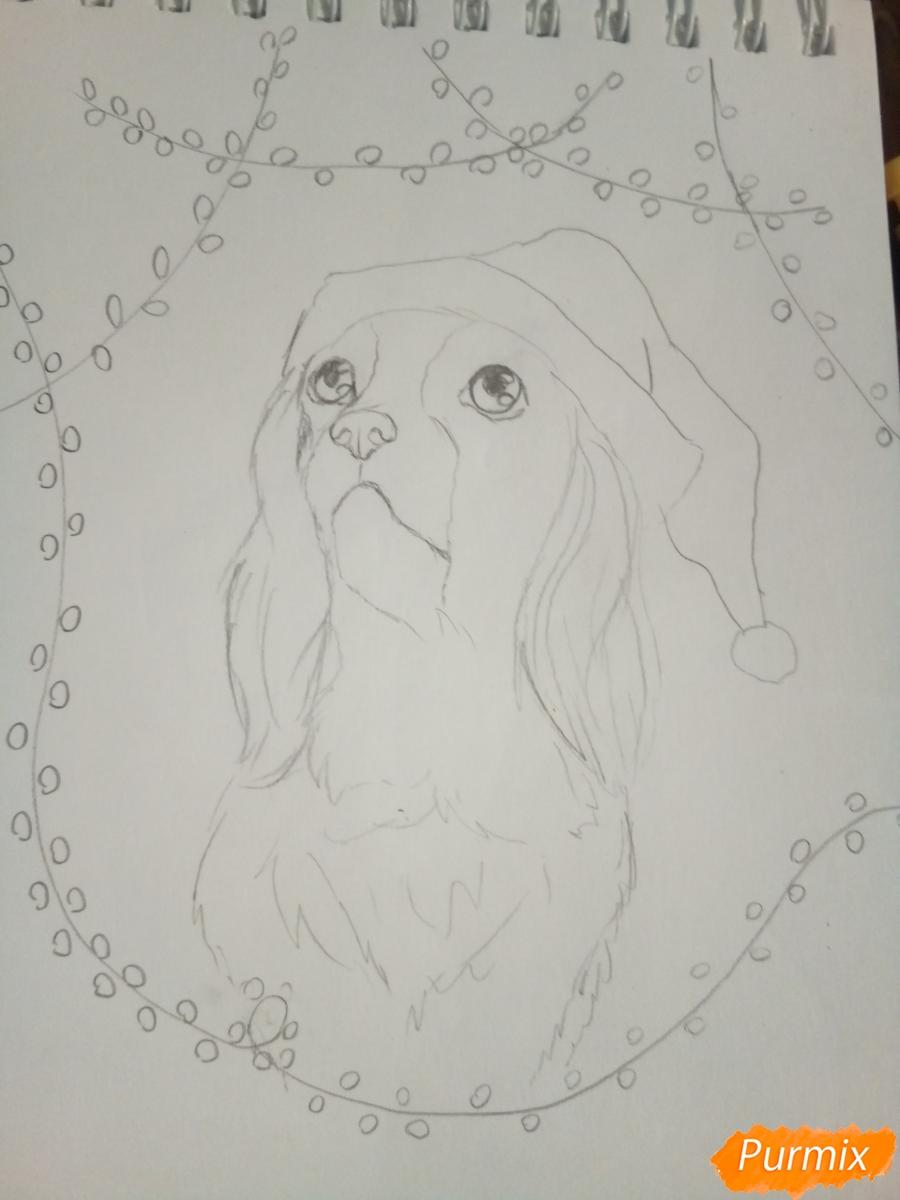 Рисуем собачку породы кавалер кинг-чарльз-спаниель на новый год - шаг 5