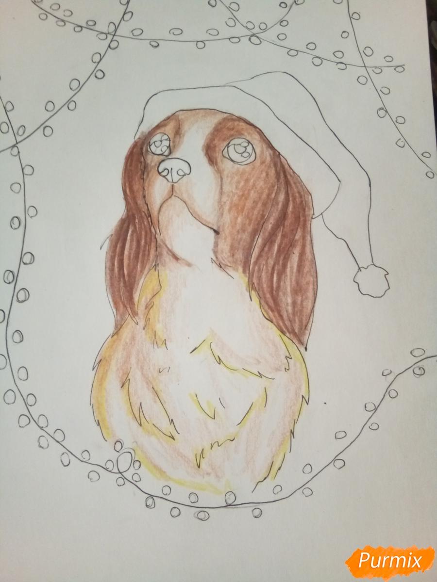 Рисуем собачку породы кавалер кинг-чарльз-спаниель на новый год - шаг 8