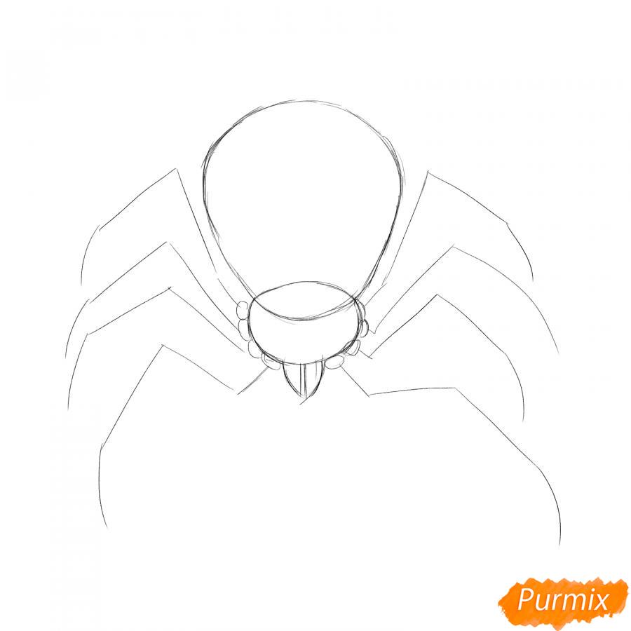 Рисуем страшного паука на Хэллоуин - шаг 2